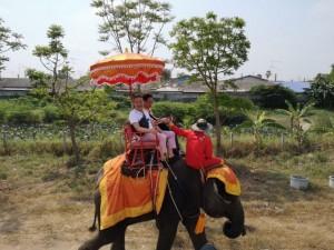 thai elepha